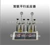 250ML双联平行反应器