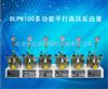 SLP6100多功能平行高压反应釜