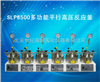 SLP6500多功能平行高压反应釜