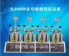 SLP4500多功能微型反应釜