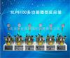 SLP6100多功能微型反应釜