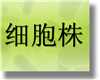 鲜绿青霉,ATCC 10515