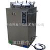 LS-B50L立式压力蒸汽灭菌器数码显示LS-B50L