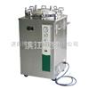 LS-B50L压力蒸汽灭菌器LS-B50L/立式压力蒸汽灭菌器