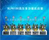 SLP6100高压多功能反应釜