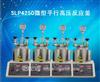 SLP4250微型平行高压反应釜