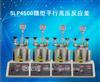 SLP4500微型平行高压反应釜