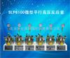 SLP6100微型平行高压反应釜
