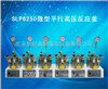 SLP6250微型平行高压反应釜