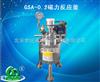 GSA-0.2磁力反应釜