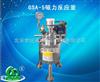 GSA-5磁力反应釜