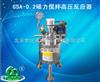 GSA-0.2磁力搅拌高压反应器