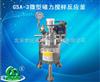 GSA-3微型磁力搅拌反应釜